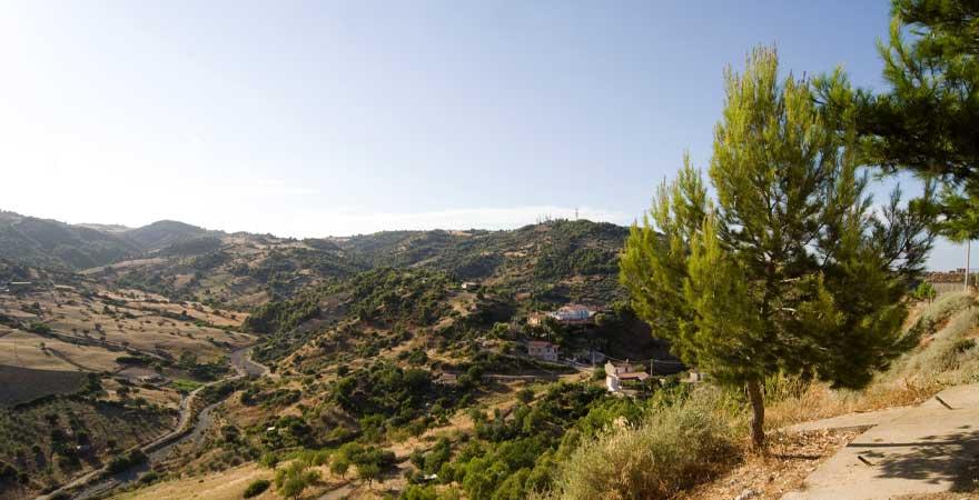 grüne landschaft in Kalabrien