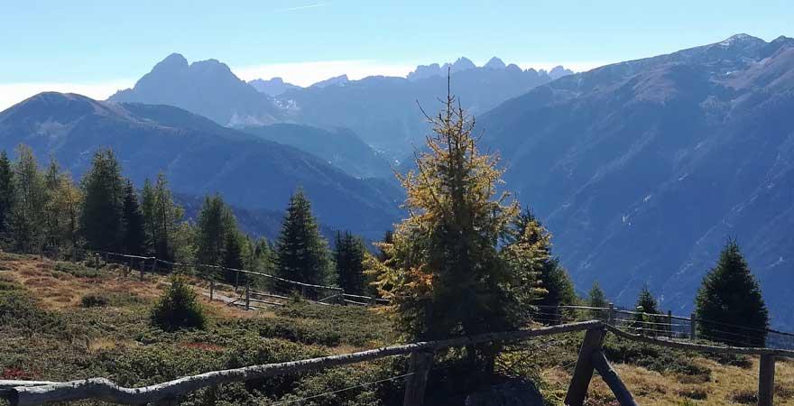 Rodenecker Alm in Südtirol