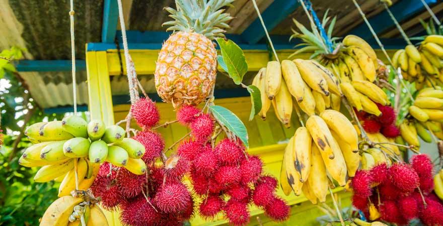 Obst Stand auf Hawaii