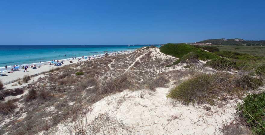 Playa de Son Bou auf Menorca