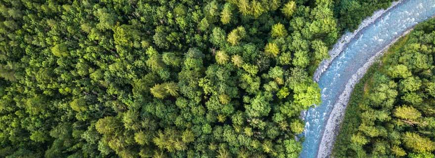 Fluss führt durch einen Wald in Schweden