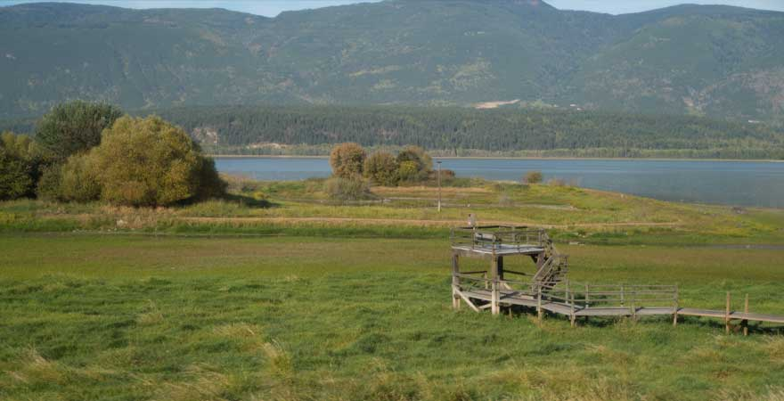 landschaft in Salmon Arm