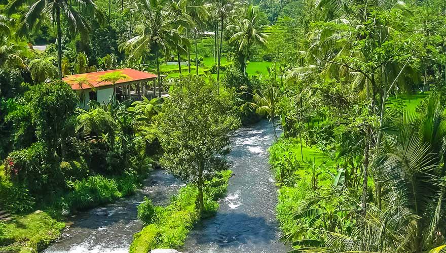 Fluss Ayung auf Bali