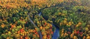 Fluss in Michigan im Herbst