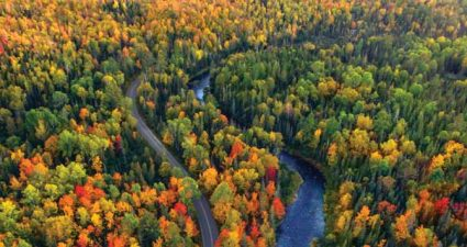 Fluss in Michigan im Herbst