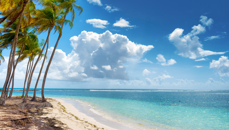strand in guadeloup