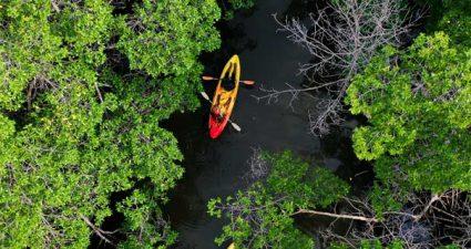 Kajaking auf einem Fluss