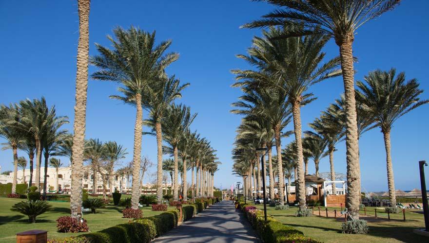 Weitläufige Anlage im Rixos Sharm el Sheikh