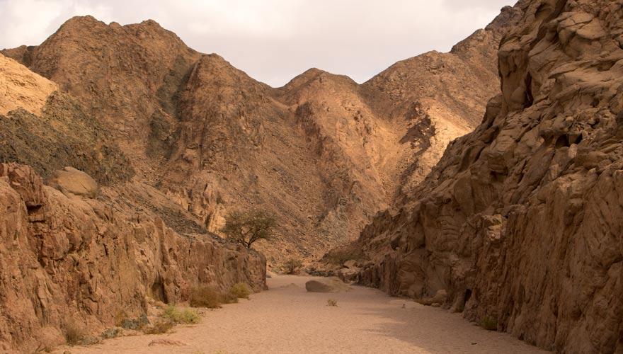 Canyon im Nabq Naturschutzgebiet bei Sharm el Sheikh