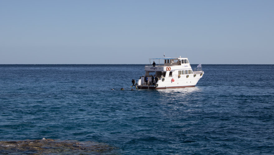 Tauchausflug in Sharm el Sheikh