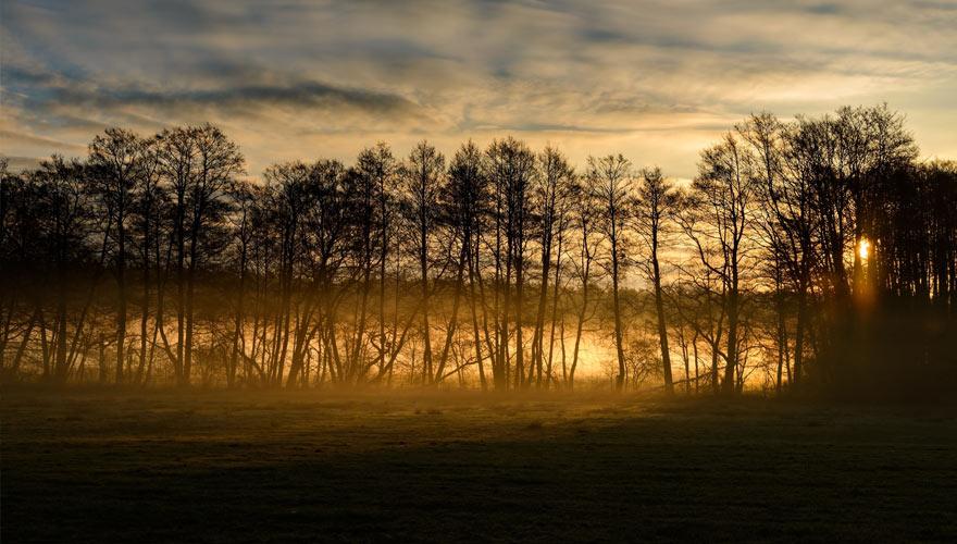 Sonnenaufgang Mecklenburgische Seenplatte