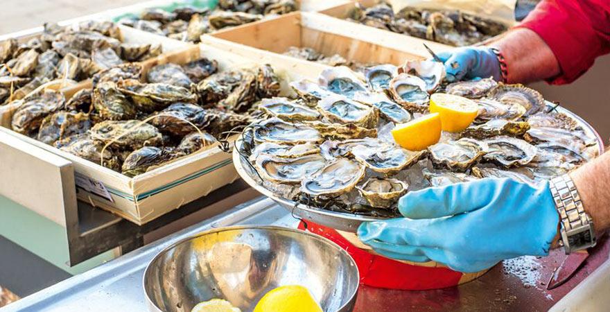 frische Austern in Frankreich