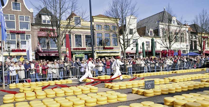 Kaesemarkt in Alkmaar in den Niederlanden