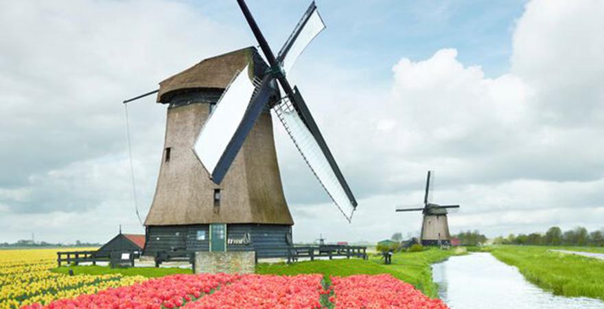 Zaanse Schans Windmuehlenpark