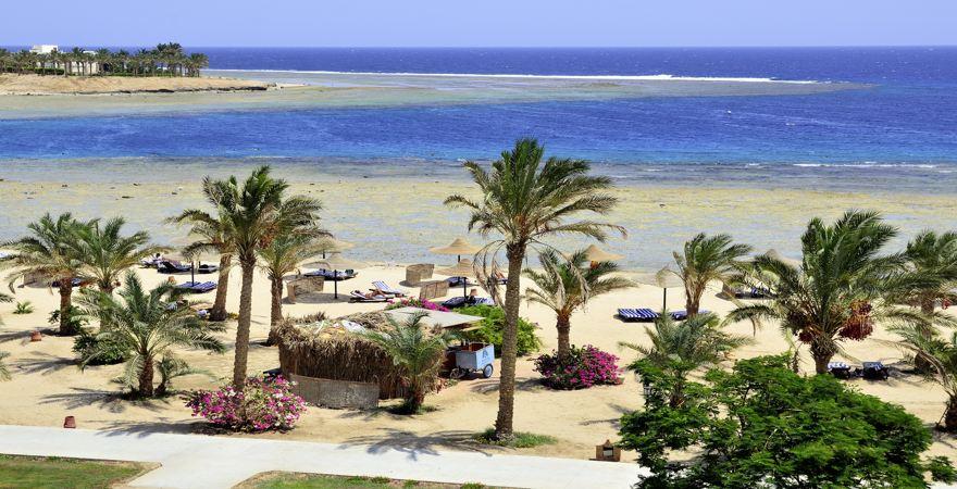 Strand von Marsa Alam mit Palmen und Blick aufs Meer.