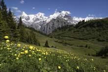Hotels mit Eigenanreise in der Schweiz günstig buchen bei FTI