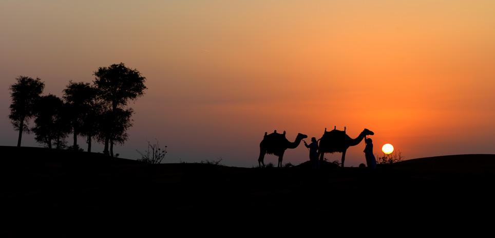 Romantischer Sonnenuntergang in der Wüste