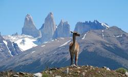 Chile Reisen Patagonien