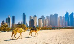 Dubai Hotels Jumeirah