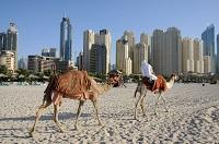 Dubai Urlaub November