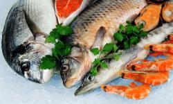 Essen Schweden Fisch