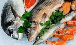 Fisch Madeira
