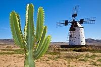 Fuerteventura All Inclusive Natur