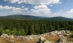 Harz Natur