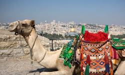 israel urlaub jerusalem aussicht