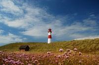 Juni Nordsee
