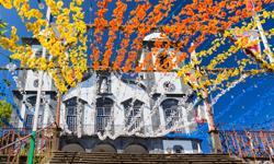 Madeira Urlaub Blumenfest