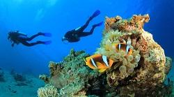 Malediven Tauchspots