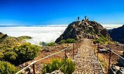 Natur Madeira