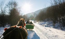 Pferdeschlittenfahrt Winterurlaub Bayerischer Wald