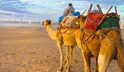 Reisetipps Last Minute Marokko