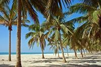 Salalah Urlaub im März