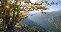 Unterkünfte Schwarzwald
