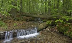 Wanderurlaub Deutschland Bayerischer Wald