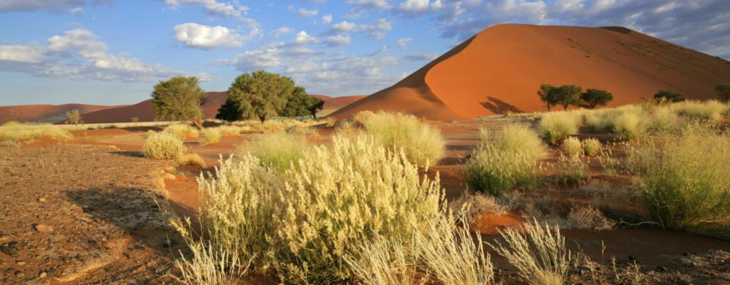 Namibia Flugerlebnis