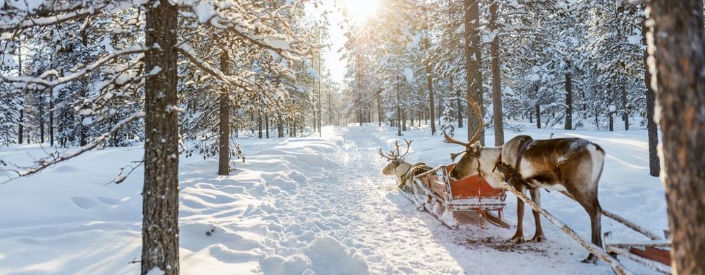 Finnland Winterurlaub