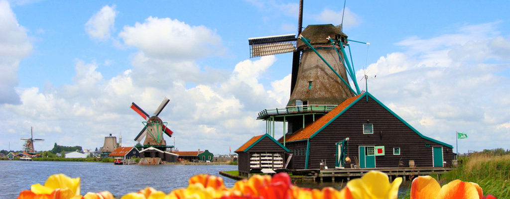 Last Minute Holland