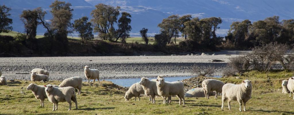 Rundreise Neuseeland