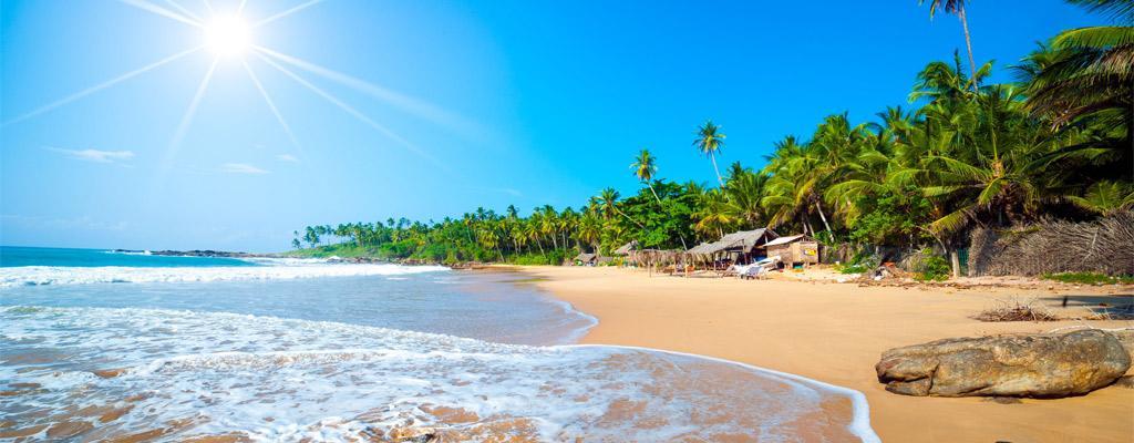 Last Minute Sri Lanka