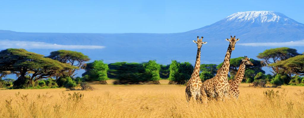 Kenia Urlaub