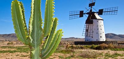 Fuerteventura Last Minute Urlaub