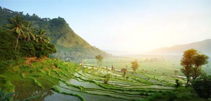 Urlaub Bali November