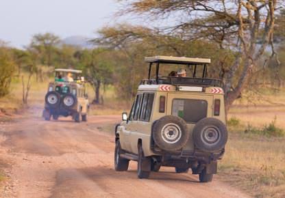 Reisetrend Suedafrika