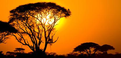Gartenroute Karoo Südafrika Urlaub