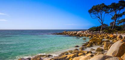 Tasmanien Winterurlaub