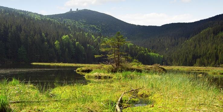 Familienhotel Bayrischer Wald 3 Sterne